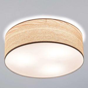 Paulmann Liska stropní světlo ze světlého dřeva
