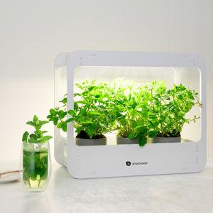 Smartwares Stolní lampy